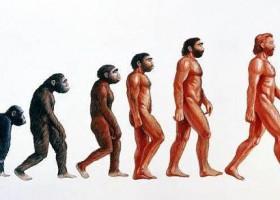 Darwinizm a Spirytyzm