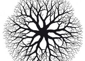 Hierarchia Duchów